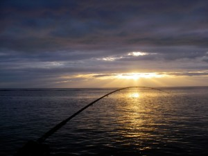 sunset-rod-small